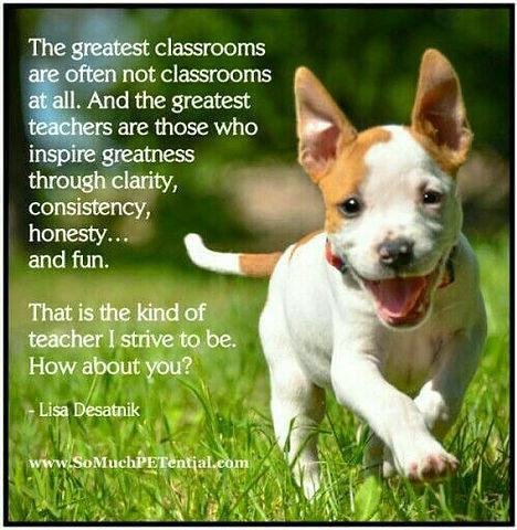puppy Classroom