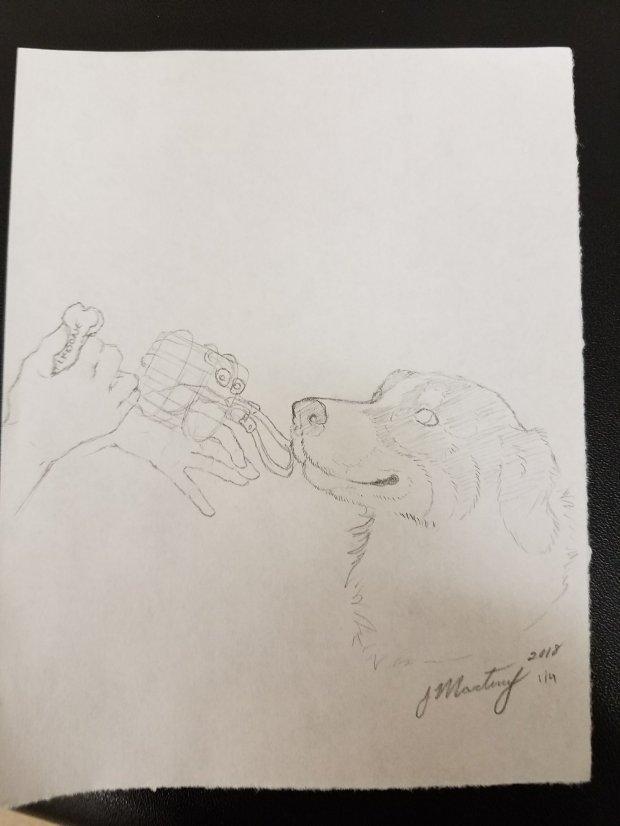 feeding muzzle art